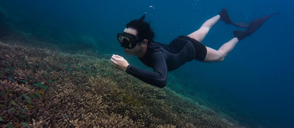 snorkelen rif bodem